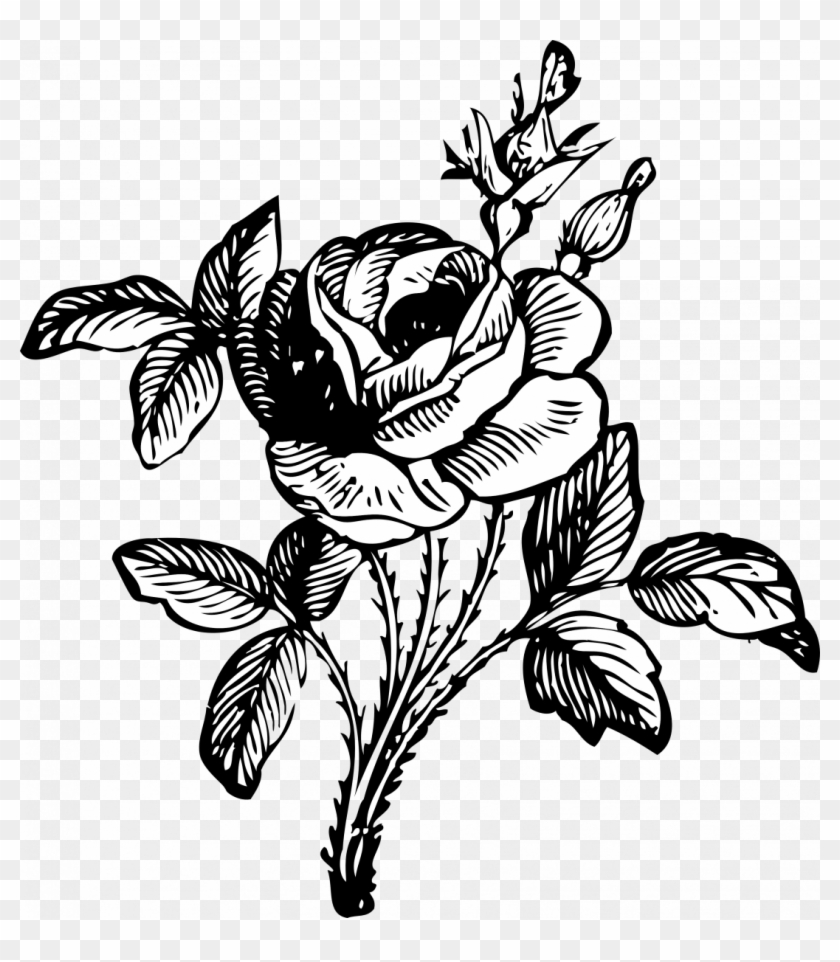 Large Size Of How To Draw A Simple Easy Rose Drawing Flowers Black And White Png Free Transparent Png Clipart Images Download