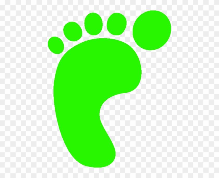 L Foot Print Green A - Life Cycle Key Words #249357