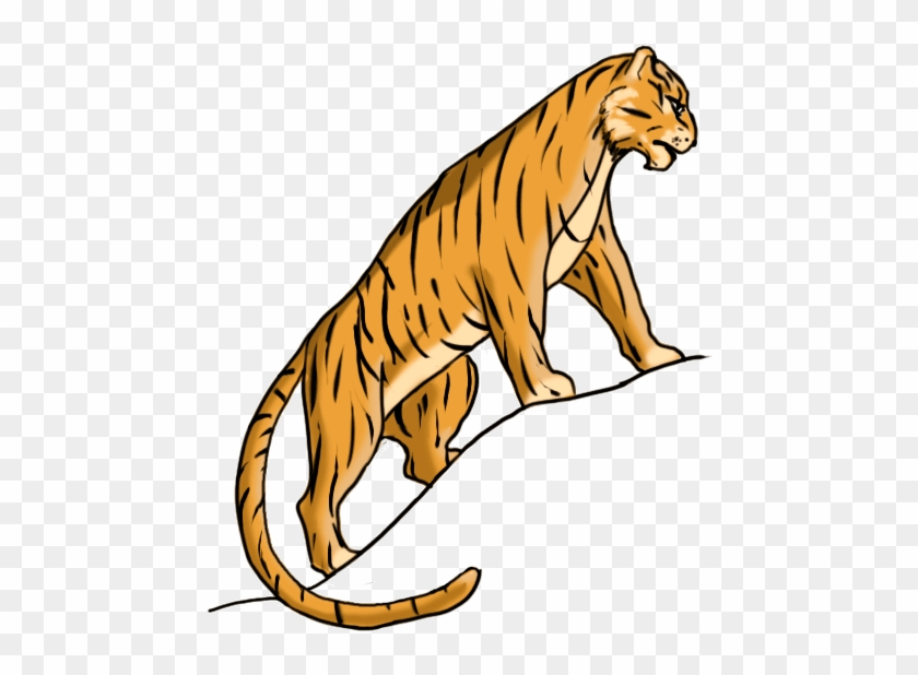 How To Draw A Tiger Easy For Kids Bengal Tiger Free Transparent Png Clipart Images Download
