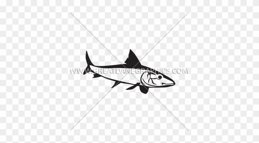 Bonefish - Bronze Hammerhead Shark #1611791