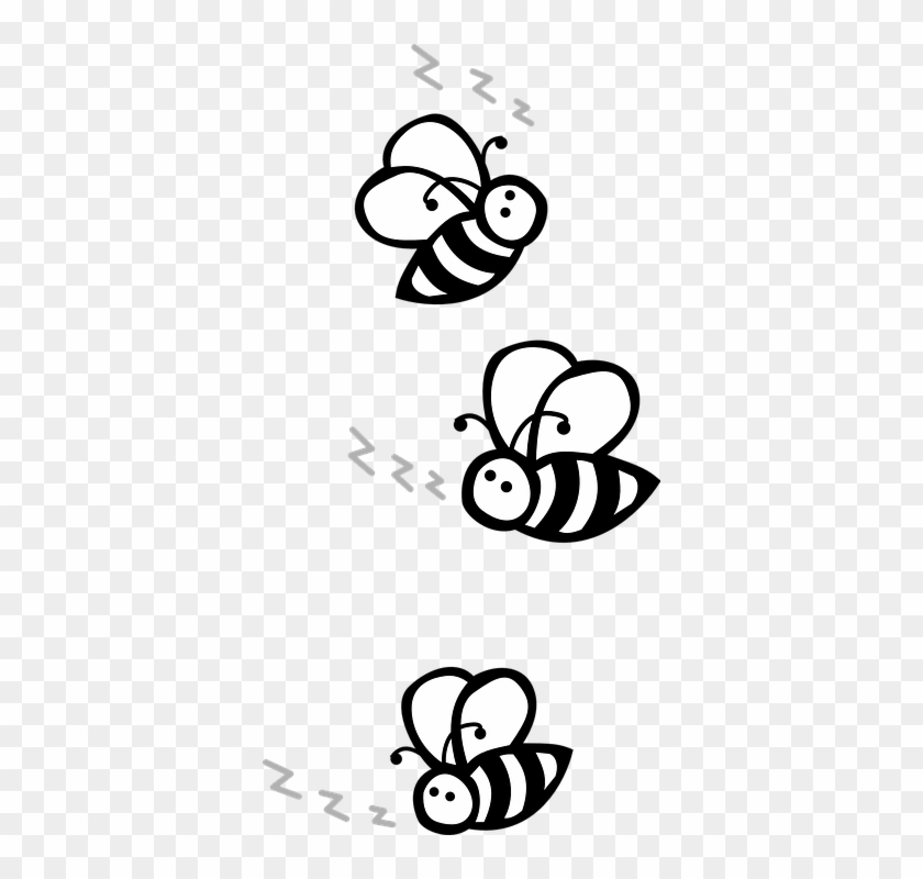 Bees Flying Black And White U00b7 Free Vector Graphic