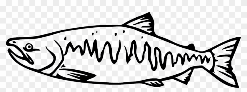 Salmon Drawing Cartoon - Pacific Salmon Black And White #1624285