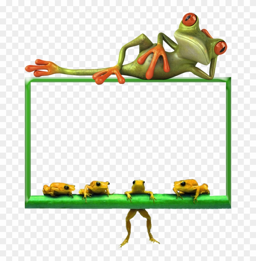 Cadre Grenouille - Funny New Year Quotes 2019 #1624884