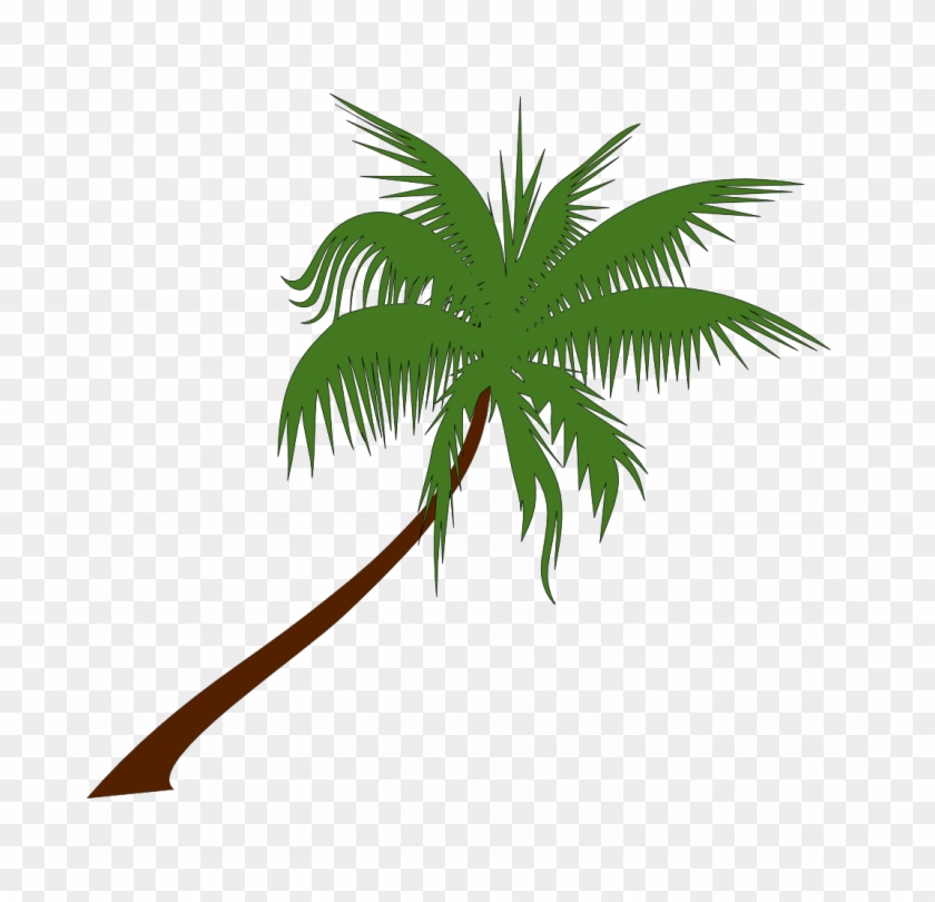 Medium Size Of Christmas Tree - Palm Tree Vector Png #1625149