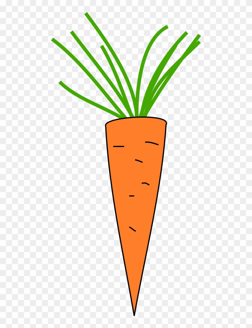 Carrot - Copyright Free Clipart Carrot #253303