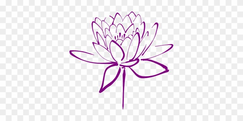 Lotus Flower Blossom Petals Decorative Blo - Japanese Flowers Clip Art #254179