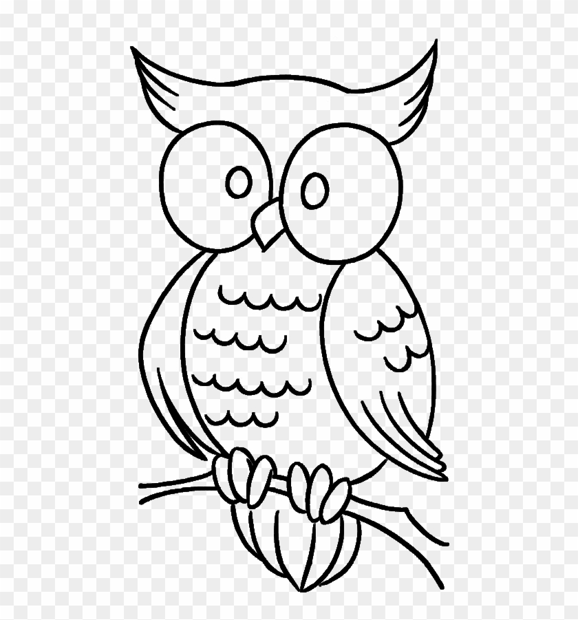 Cute Owl With Bulging Eyes Coloring Pages - Simple Owl Coloring Pages -  Free Transparent PNG Clipart Images Download