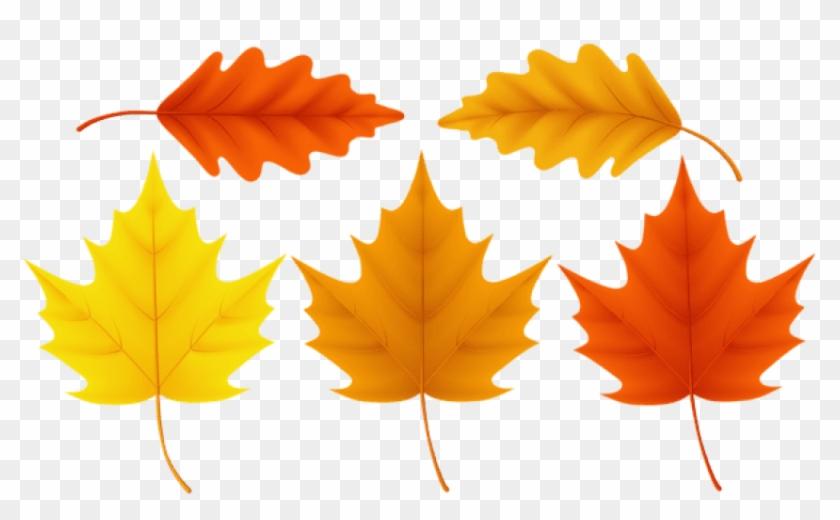 Fall Leaves Free Clip Art - Cliparts.co   Fall clip art, Leaf clipart, Tree  art