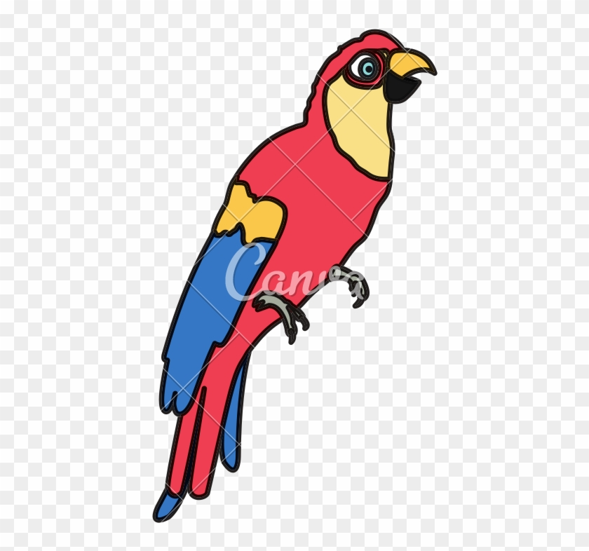 Color Tropical Parrot Bird Animal Style - Macaw #1635263