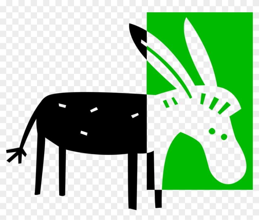 Vector Illustration Of Domesticated Donkey Or Ass - Burro #1635974