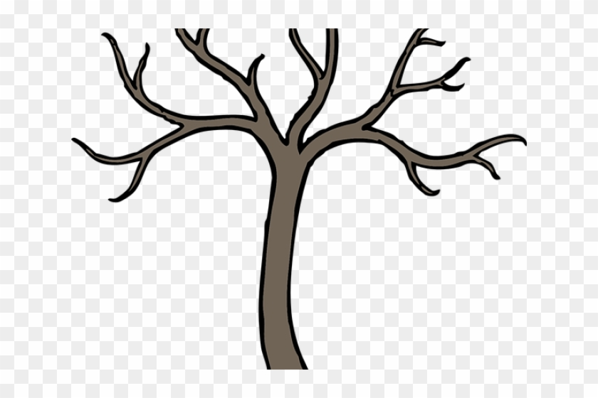 Tree Clipart Clipart Lot Branch Cartoon Tree Branch Drawing Free Transparent Png Clipart Images Download A deciduous oak tree with green leaves and fresh vector. tree clipart clipart lot branch