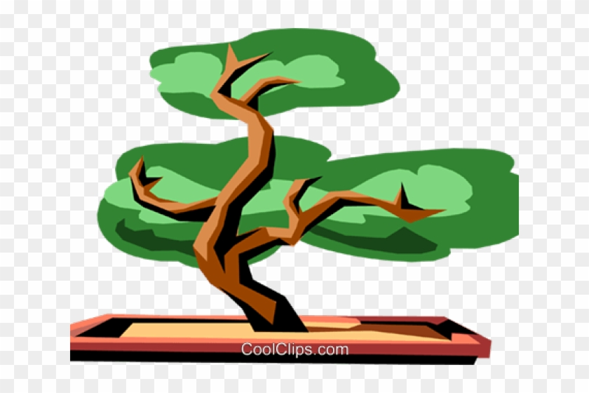 Bonsai Clipart Old Tree Cartoon Bonsai Tree Png Free Transparent Png Clipart Images Download