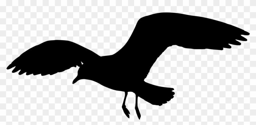 seagull silhouette clip art - HD1280×853