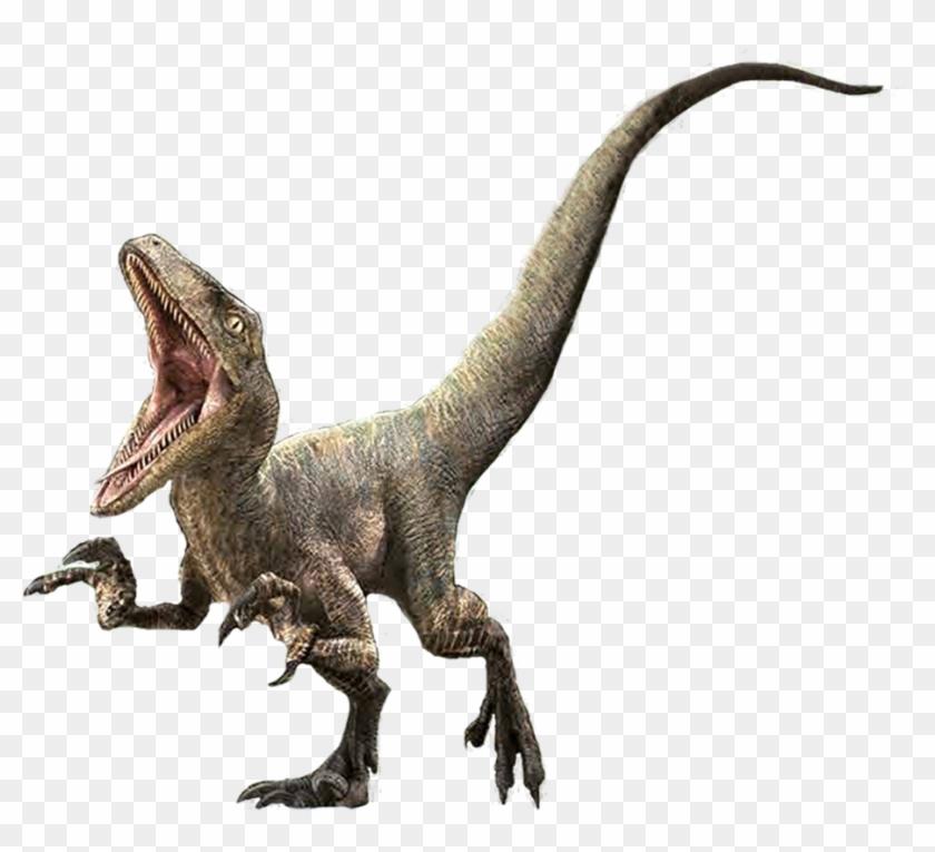 1181 X 827 6 - Jurassic World Velociraptor Delta #1658096