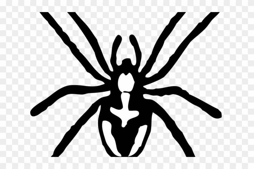 Tarantula Clipart Transparent Spider Clipart Black And