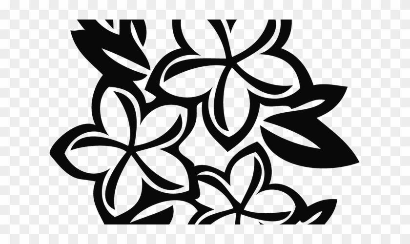 Black And White Line Art Source - Drawing Plumeria Flower #1677666