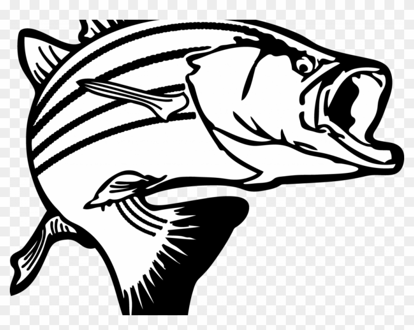 Download Clip Art Fish - Salmon Clipart Black And White #1680711