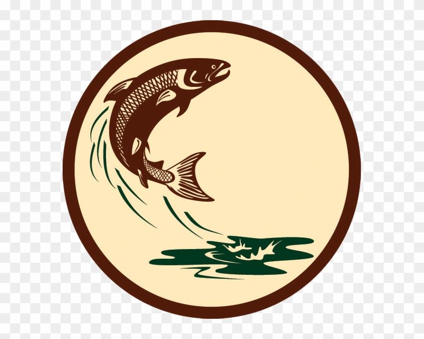 John Hoeko Archives Spillian Gallery Ⓒ - Salmon Fish Jumping #1691305