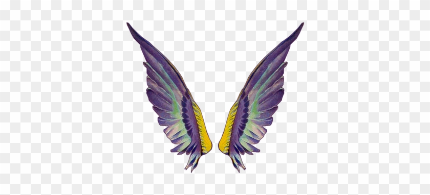Clip Art Related Wings Transprent Png Free - Fairy Wing Gif Transparent #1695148