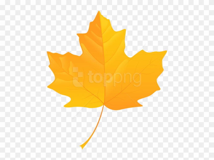 Free Png Download Yellow Leaf Clipart Png Photo Png - Yellow Fall Leaves Clip Art #1700307