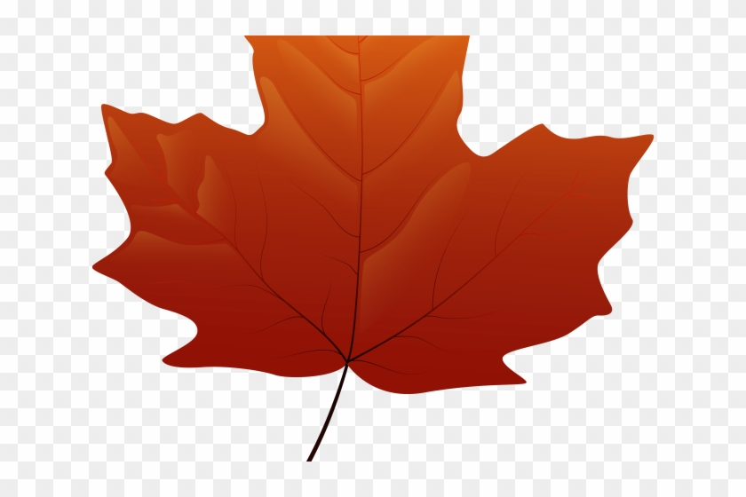 Autumn Leaves Clipart Falll - Maple Leaf Png Yellow #1709250