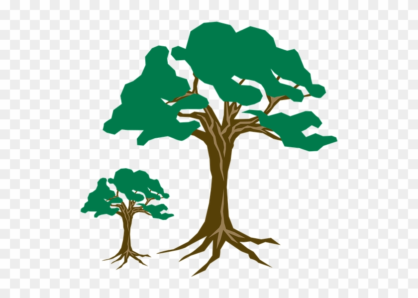 Clipart Tree Green Arbre Clipart Free Transparent Png Clipart Images Download
