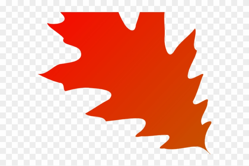 Autumn Leaves Clipart Transparent Background 22 500 - Red Oak Leaf Clipart #1711476
