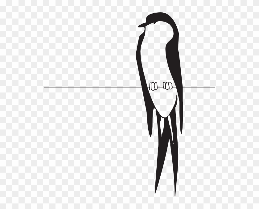 Wire Clipart Bird On Wire Bird On A Wire Svg Free Transparent Png Clipart Images Download