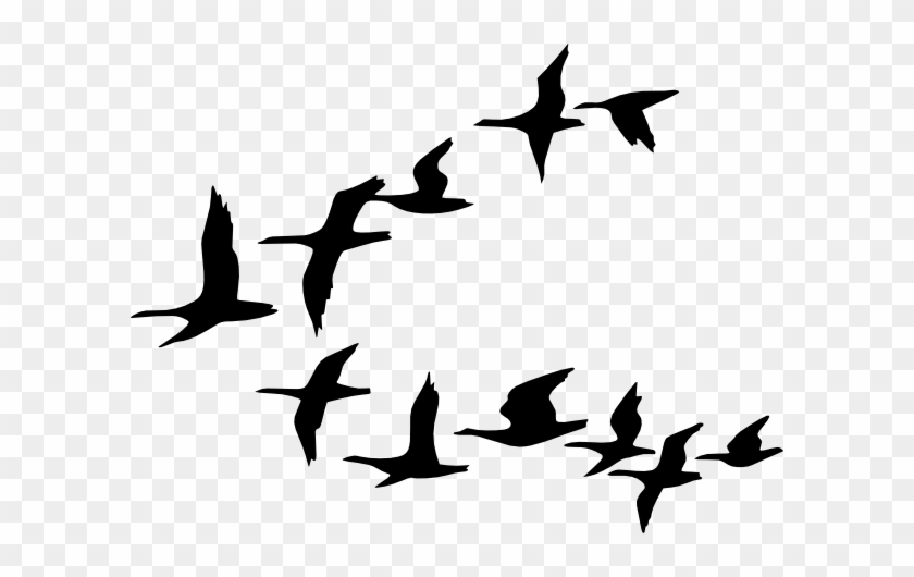 Flying Birds Clipart Flying Bird Vector Png Free Transparent Png Clipart Images Download