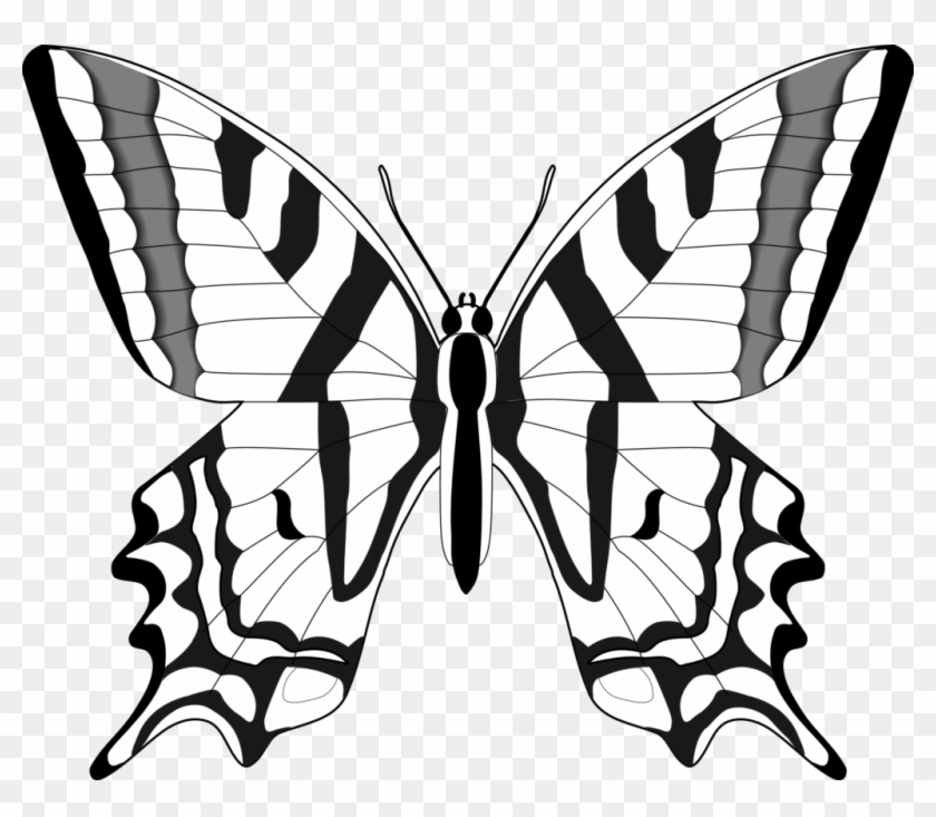 Butterfly Black And White Butterfly Clip Art Black - Butterflies In Black And White #263500