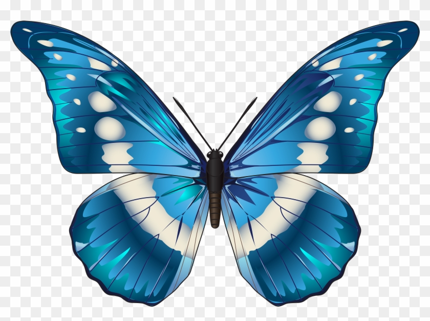 Butterfly Blue Png Clip Art Image Transparent Background Butterfly