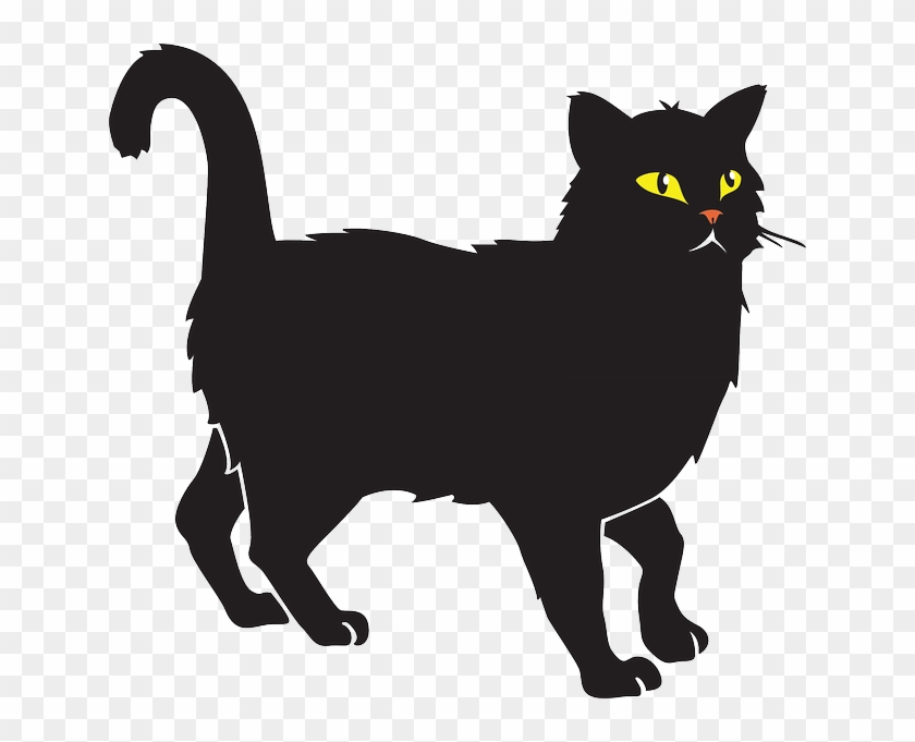 Whiskers Cat Black Halloween Pet Animal Tail Cat Vector