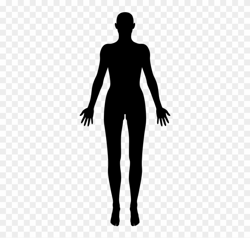 Woman Female Figure Human People Person Female Human Body Silhouette Free Transparent Png Clipart Images Download Download 25,216 human silhouette free vectors. person female human body silhouette