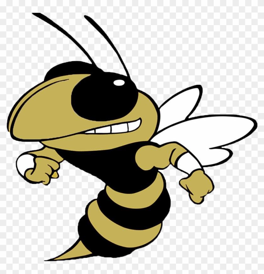 T L Hanna Yellowjackets - Georgia Tech Yellow Jackets Football #268225
