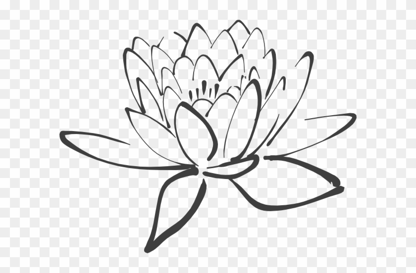 Lotus Flower Outline Black And White Lotus Free Transparent Png