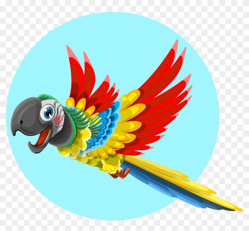 Free Macaw Bird Clip Art #270535