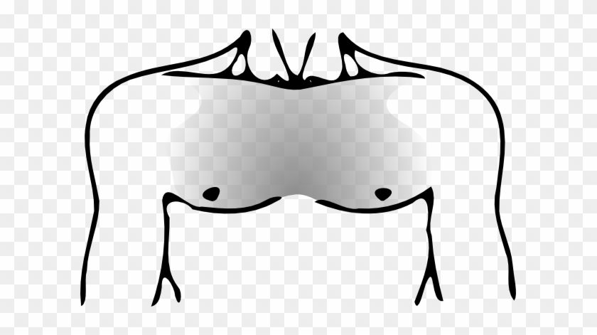 Human Chest Png #44887