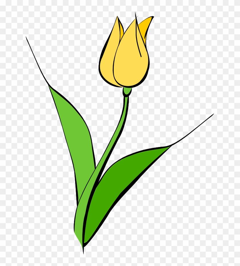 Spring - Clip Art Yellow Tulip #48745