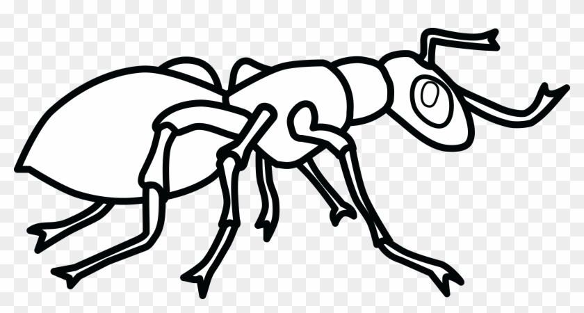 Free Clipart Of An Ant - Clip Art Black And White Ant #48779