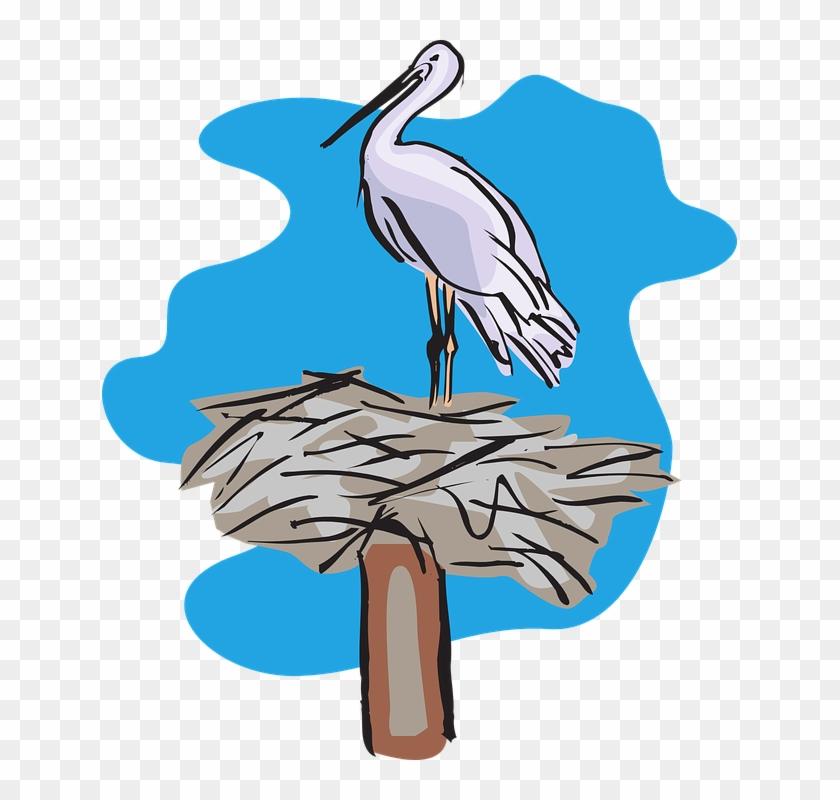 Stork Nest Vector #49585