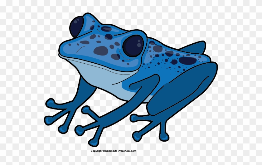 Free Frog Clipart - Poison Dart Frog Clipart #50385