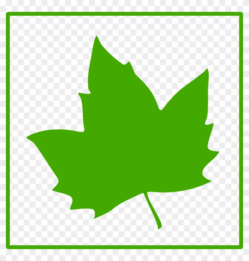 Green Leaf Icon Clip Art At Clker - Green Maple Leaf Icon #51064