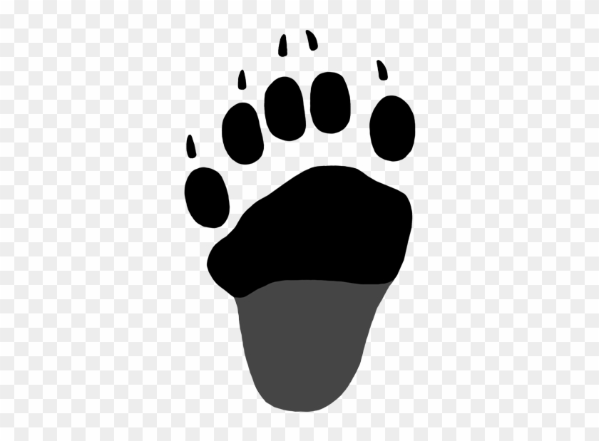 Black Bear Tracks Naturetracking - Black Bear Hind Paw Print #51628