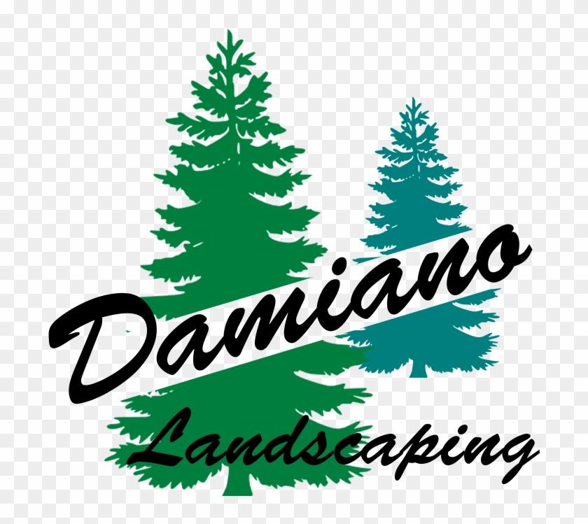 Damiano Landscaping - Lawn Maintenance - Google - Pine Tree Silhouette #51666