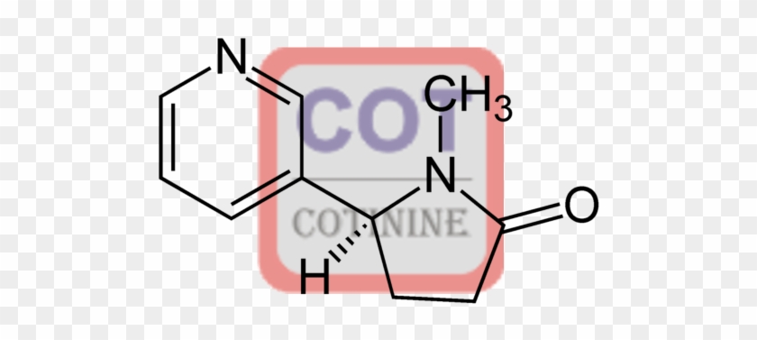 Cotinine-4 Conjugate - Synthesis Of M Nitrobenzoic Acid #51866