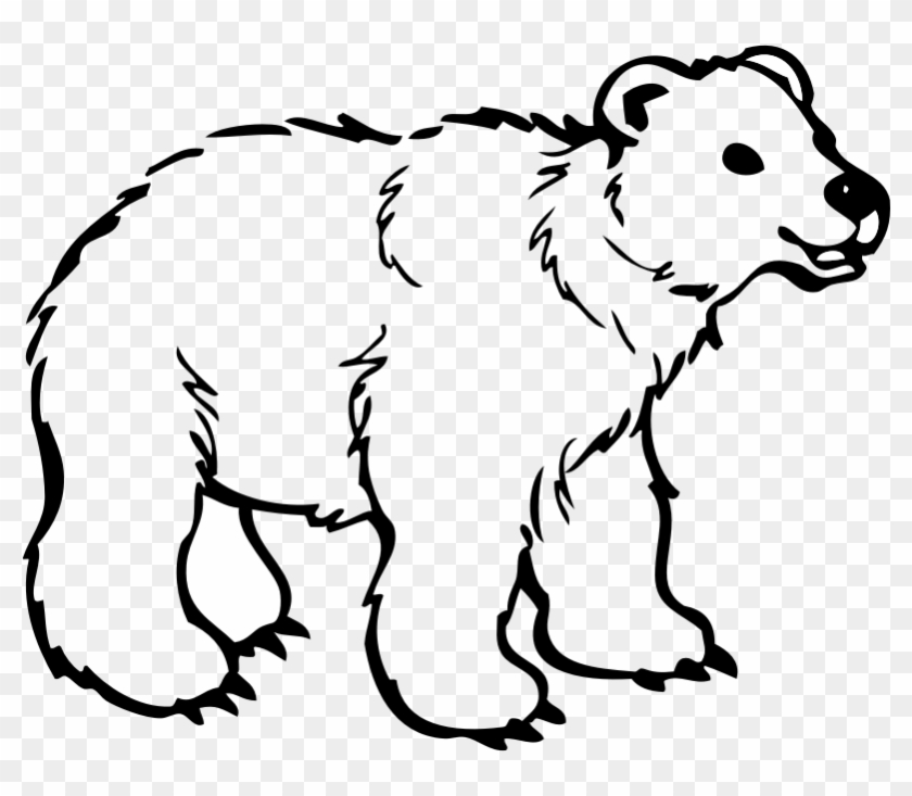 Black Bear Cartoon Free Download Clip Art Free Clip - Polar Bear Black And White #51901