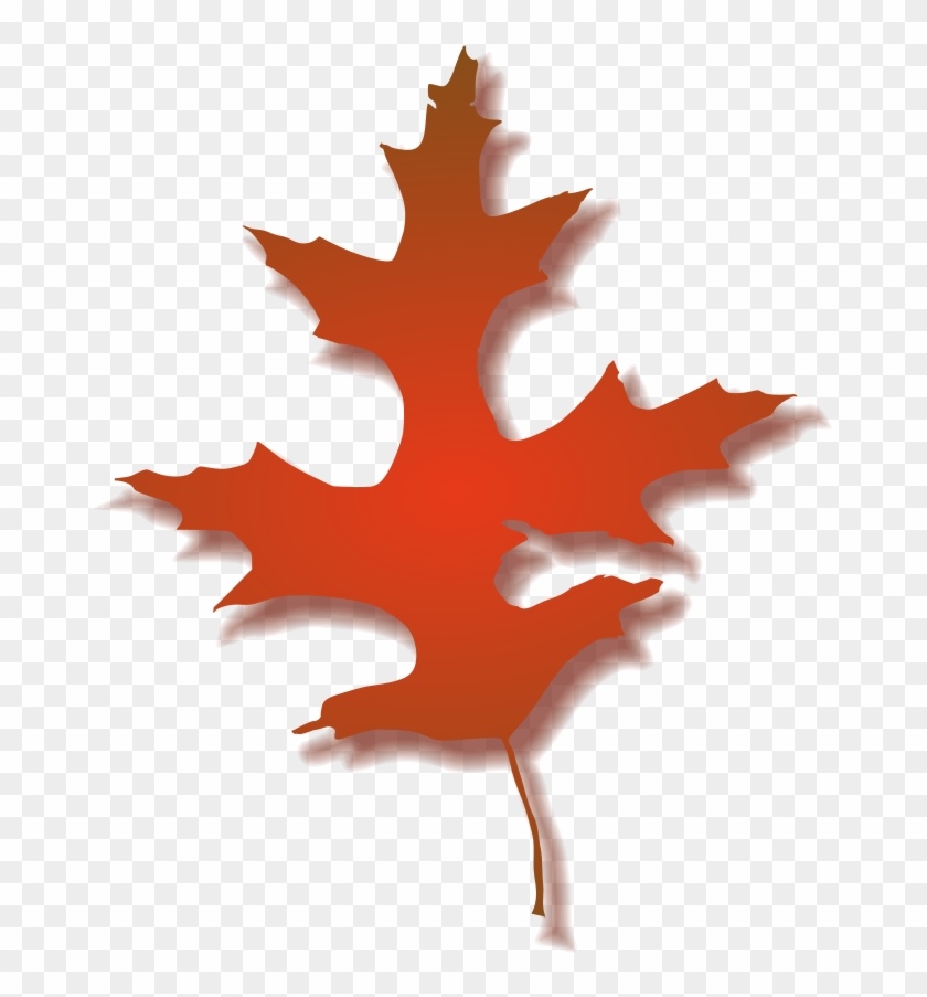 There Is 51 Fall Oak Tree Free Cliparts All Used For - Fall Oak Leaf Clipart #271193