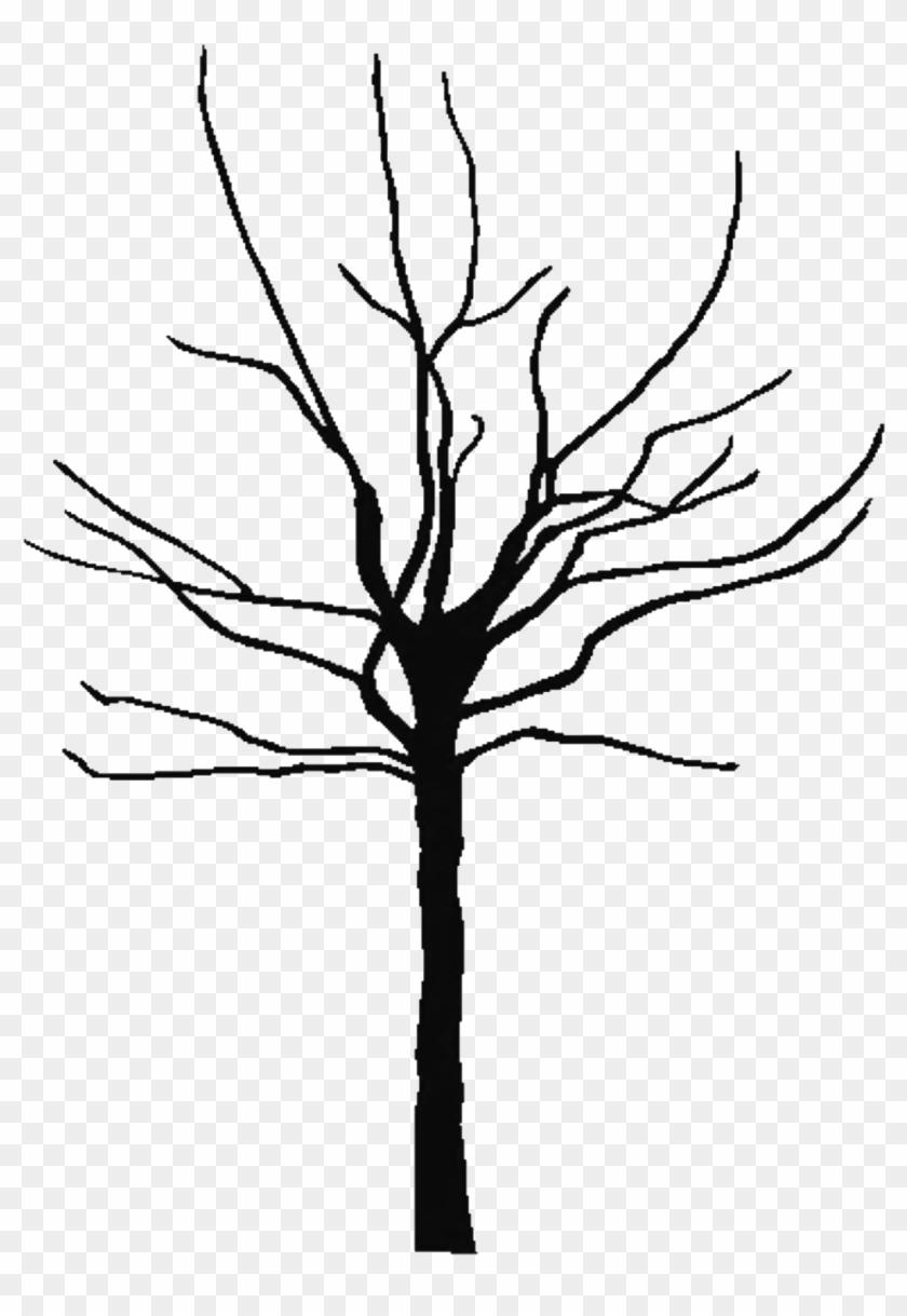 Black - And - White - Bare - Tree - Clipart - Bare Clipart Tree #271371