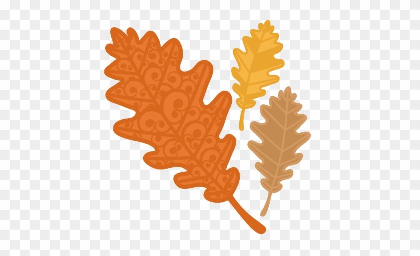 Fall Flourish Leaf Svg Scrapbook Cut File Cute Clipart - Miss Kate Cuttables Fall Background #271381