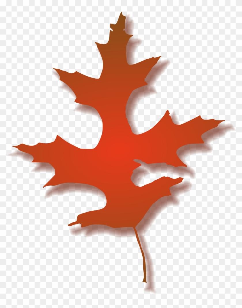 Big Image - Fall Oak Leaf Clipart #271495